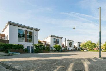Magnoliahof – 's-Hertogenbosch